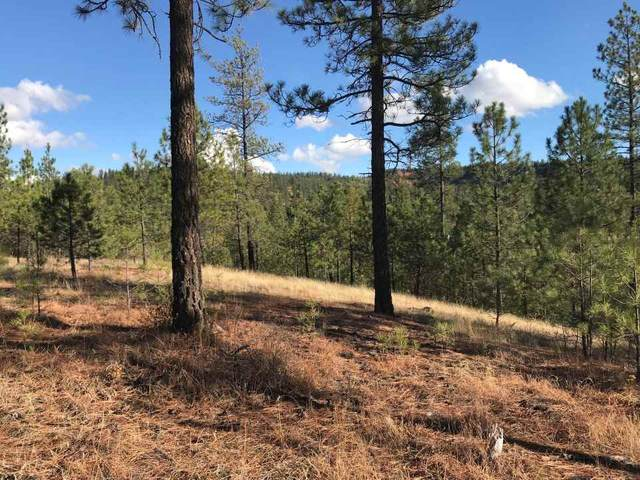 Lot 11 Woods Way, Springdale, WA 99173 (#202015696) :: The Synergy Group