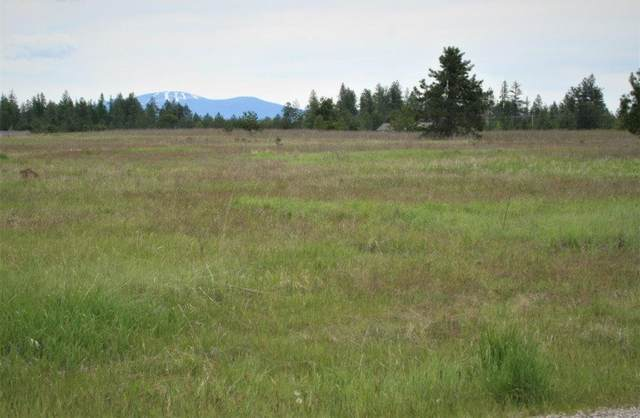 XXXXX N Sunnyside Ln, Deer Park, WA 99006 (#202015760) :: Northwest Professional Real Estate