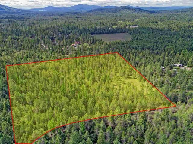 3881 Bump Hill Way Way, Loon Lake, WA 99148 (#202015862) :: Five Star Real Estate Group
