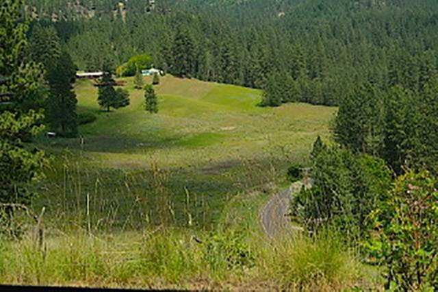 6724 B Hwy 291 Hwy Lot 5, Tumtum, WA 99006 (#202015879) :: Top Spokane Real Estate