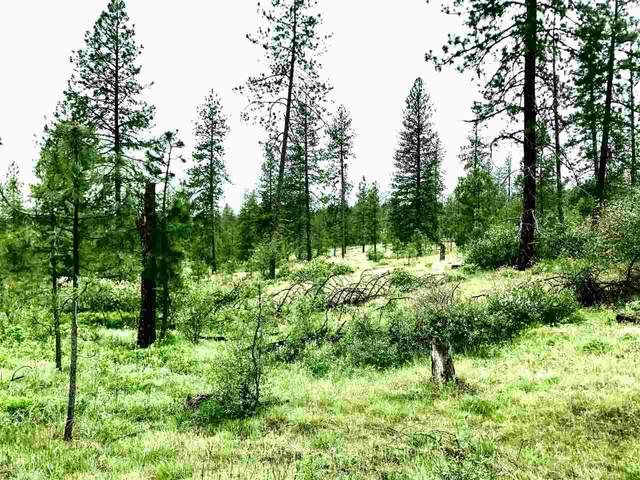00xx N Swenson Rd, Nine Mile Falls, WA 99026 (#202015910) :: Prime Real Estate Group