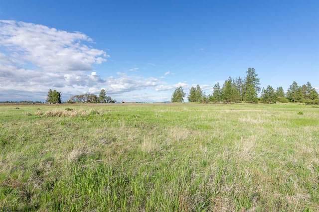 xxxxx W Burnett Rd, Nine Mile Falls, WA 99026 (#202016019) :: Chapman Real Estate