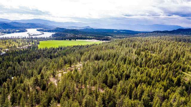 991 Timber Mountain Rd, Newport, WA 99156 (#202016037) :: Northwest Professional Real Estate