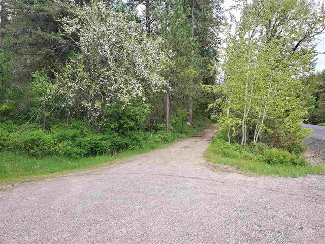 19999 E Blanchard Rd, Elk, WA 99009 (#202016042) :: Prime Real Estate Group