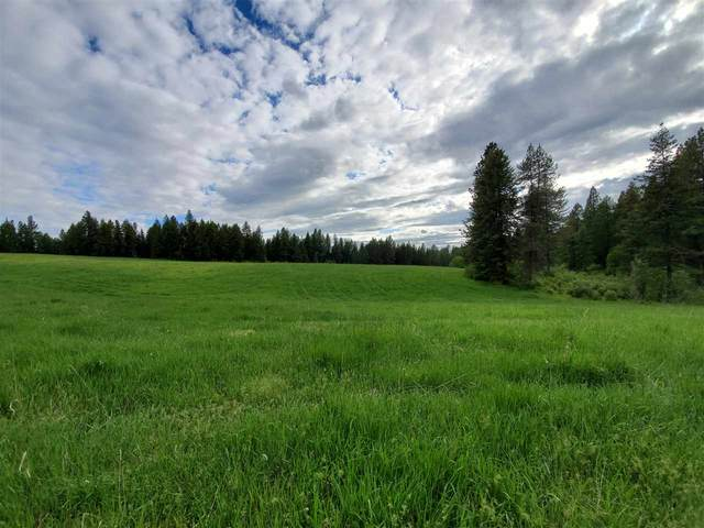 19xxx E Chapman Rd, Elk, WA 99009 (#202016100) :: Prime Real Estate Group