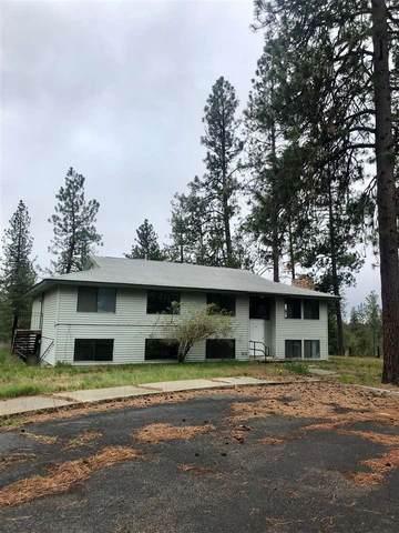 22125 W Mcfarlane Rd, Medical Lake, WA 99022 (#202016108) :: Prime Real Estate Group