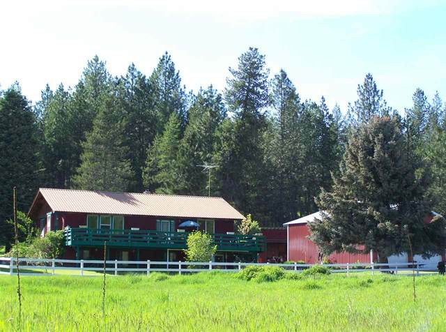 42505 N Elk-Camden Rd, Elk, WA 99009 (#202016216) :: The Synergy Group