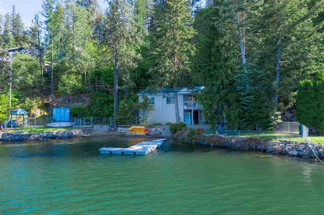 41734 Arnold Rd, Loon Lake, WA 99148 (#202016225) :: The Synergy Group