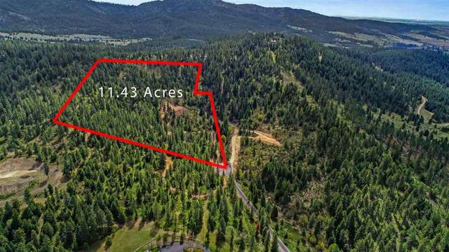0xxx S Bridle Trail Ln, Greenacres, WA 99016 (#202016295) :: Chapman Real Estate