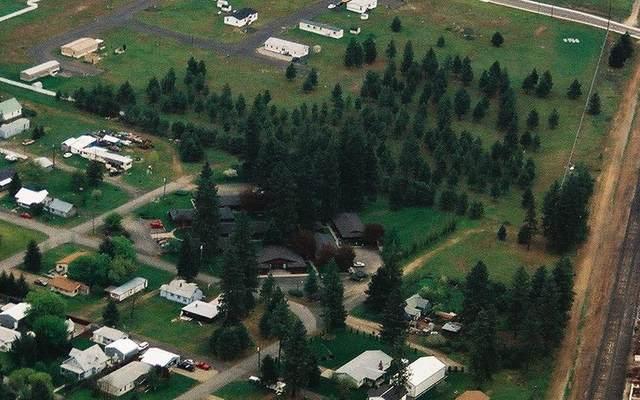 204 E D St, Deer Park, WA 99006 (#202016383) :: Northwest Professional Real Estate