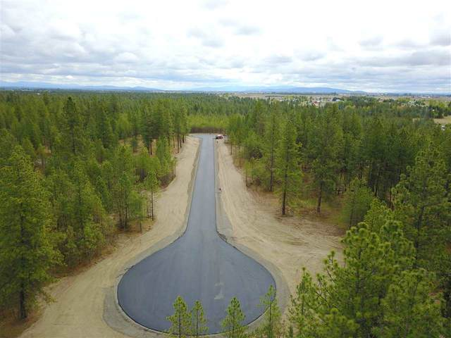 000 S Wheatland St Lot 9, Medical Lake, WA 99022 (#202016531) :: The Synergy Group