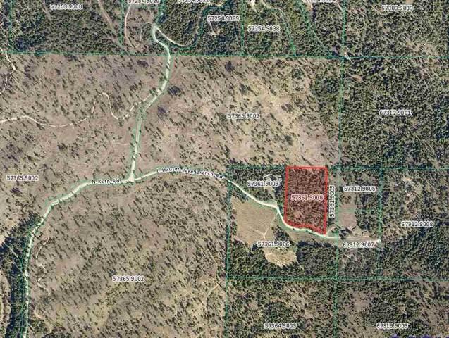 000 N Unassigned Address Rd, Newman Lake, WA 99025 (#202016543) :: The Hardie Group