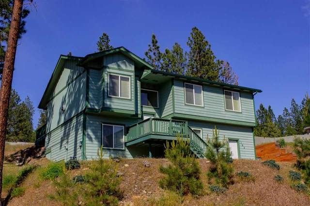 123 E Frainklin Dr, Nine Mile Falls, WA 99206 (#202016554) :: The Hardie Group