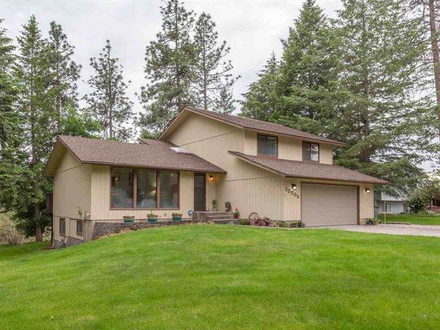 12205 W Sunridge Dr, Nine Mile Falls, WA 99026 (#202016573) :: The Synergy Group