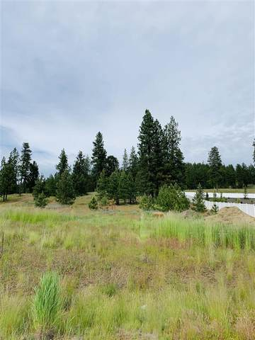 20929 E Happy Trails Ln, Otis Orchards, WA 99216 (#202016669) :: The Synergy Group