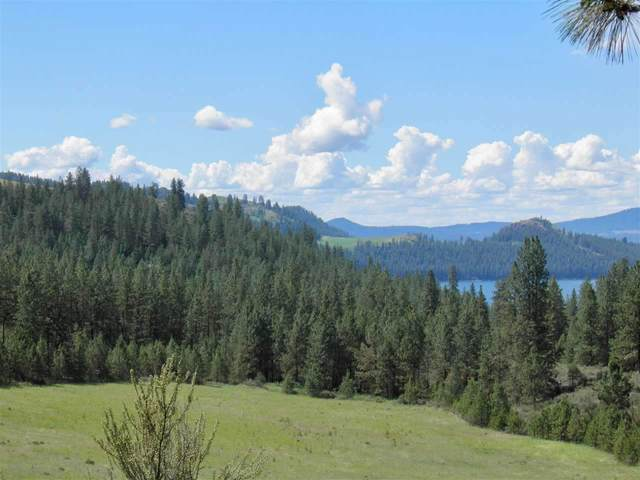 4422 Hwy 25 S Parcel 1606002, Hunters, WA 99137 (#202016802) :: Parrish Real Estate Group LLC
