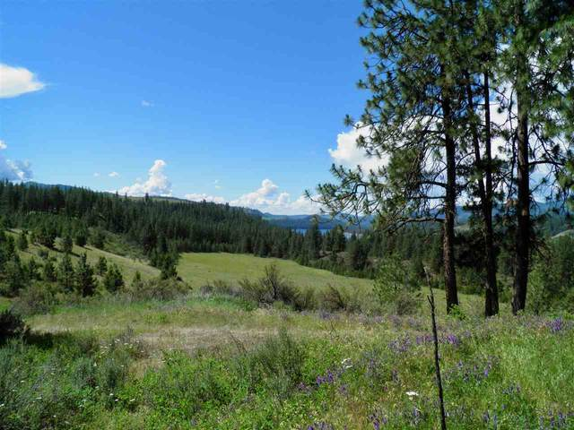 4422 Hwy 25 S Parcel 1595997, Hunters, WA 99137 (#202016803) :: Parrish Real Estate Group LLC
