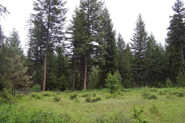TBD Aeneas Creek Rd, Curlew, WA 99118 (#202017009) :: The Hardie Group