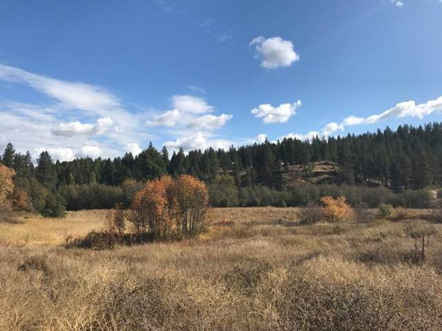 0 Nka, Elk, WA 99009 (#202017118) :: Prime Real Estate Group