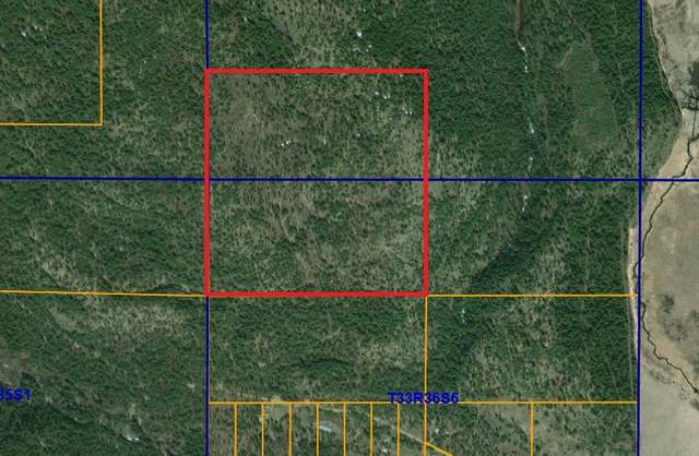 2505 Hall Creek Rd, Inchelium, WA 99138 (#202017121) :: The Hardie Group
