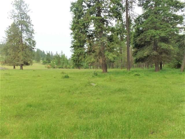 454 S Barnaby Creek Rd, Inchelium, WA 99138 (#202017151) :: The Hardie Group
