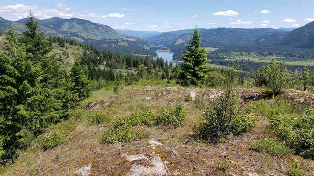 3478 Moore Rd, Kettle Falls, WA 99141 (#202017253) :: The Synergy Group