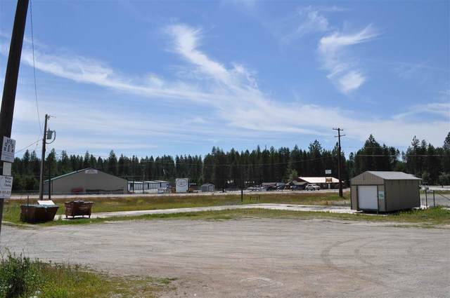 802 Southshore Diamond Lake Rd, Newport, WA 99156 (#202017287) :: The Synergy Group