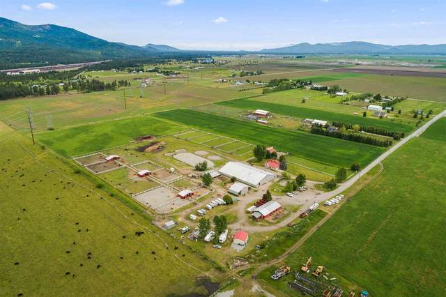 11875 W Manitoba Ct, Post Falls, ID 83854 (#202017369) :: Prime Real Estate Group