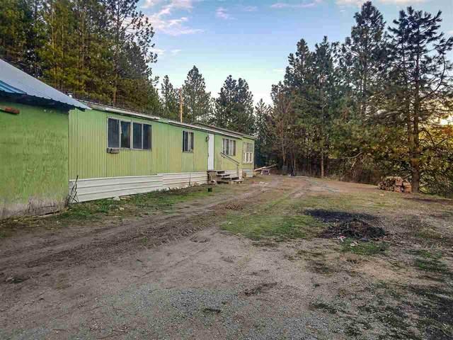 4104 Ali Vista Way, Loon Lake, WA 99148 (#202017389) :: RMG Real Estate Network