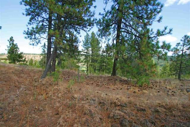 5229 S Falcon Point Ct, Spokane, WA 99224 (#202017639) :: Five Star Real Estate Group