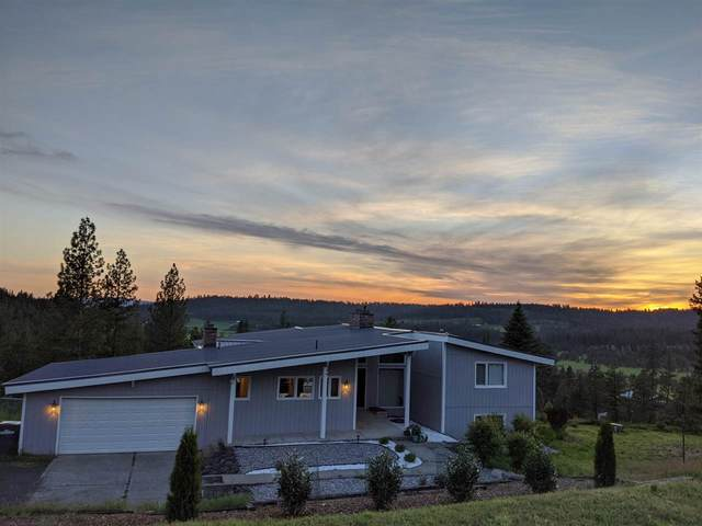 12515 E Big Meadows Rd, Chattaroy, WA 99003 (#202017701) :: The Synergy Group