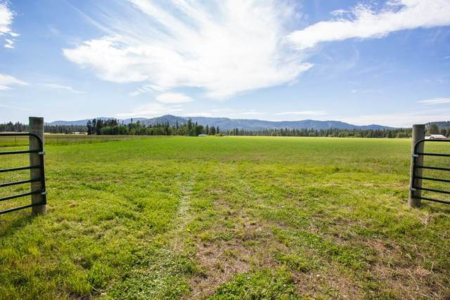TBD N Williams Valley Rd, Clayton, WA 99110 (#202017987) :: Prime Real Estate Group