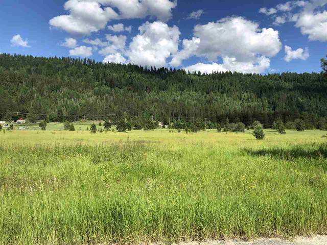 000 Larch Lane (Lot 46) Ln, Cusick, WA 99119 (#202018046) :: Five Star Real Estate Group