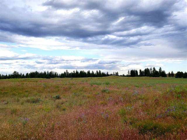 146XX W Craig Rd Lot A M.O.L, Spokane, WA 99224 (#202018063) :: Five Star Real Estate Group