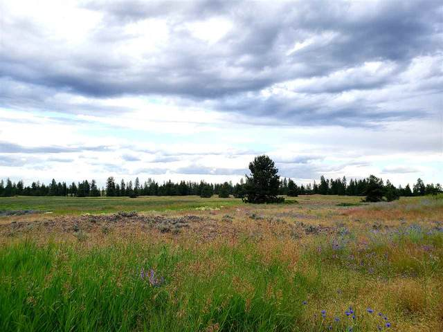 146XX W Craig Rd Lot C M.O.L, Spokane, WA 99224 (#202018065) :: Five Star Real Estate Group