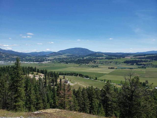 842- TBD Valley Westside Rd, Colville, WA 99114 (#202018101) :: Northwest Professional Real Estate
