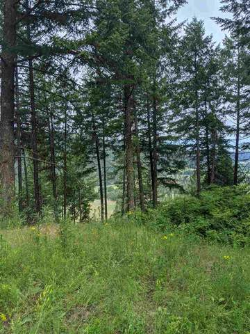 Lot 7 Williams Lake Rd Rd, Colville, WA 99114 (#202018112) :: Northwest Professional Real Estate