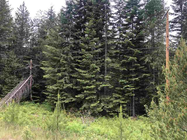 Lot 3 Coyote Trail Rd, Newport, WA 99156 (#202018131) :: Prime Real Estate Group