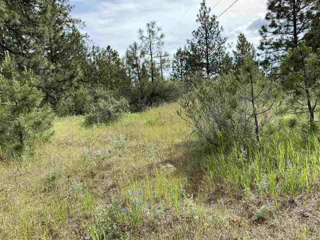 27814 E Wild Turkey Ln, Creston, WA 99117 (#202018199) :: Chapman Real Estate