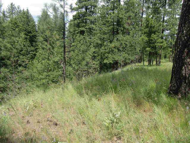 Lot 11 Diamond Heights Rd, Oldtown, WA 83822 (#202018223) :: Five Star Real Estate Group