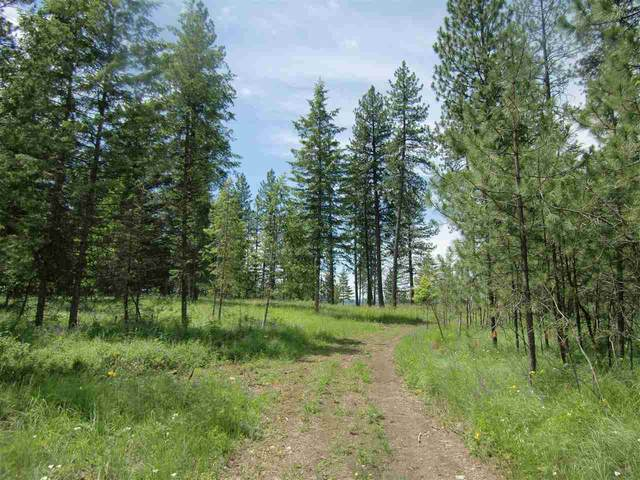 Lot 12 Diamond Heights Rd, Oldtown, ID 83822 (#202018227) :: Top Agent Team