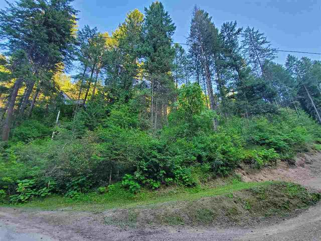 3969 Cedar Bay Rd, Loon Lake, WA 99148 (#202018351) :: The Synergy Group