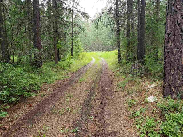 XXX Forest Service Rd, Springdale, WA 99173 (#202018400) :: Prime Real Estate Group