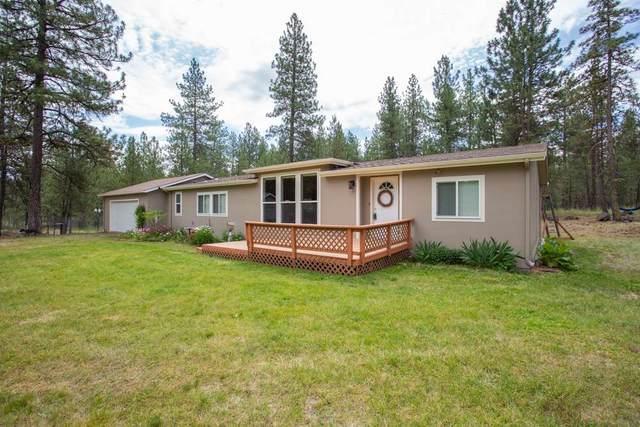 11914 N Ritchey Ln, Spokane, WA 99224 (#202018469) :: The Spokane Home Guy Group