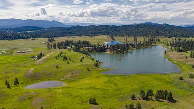 789 G Kitt Narcisse Rd, Colville, WA 99114 (#202018729) :: Top Spokane Real Estate