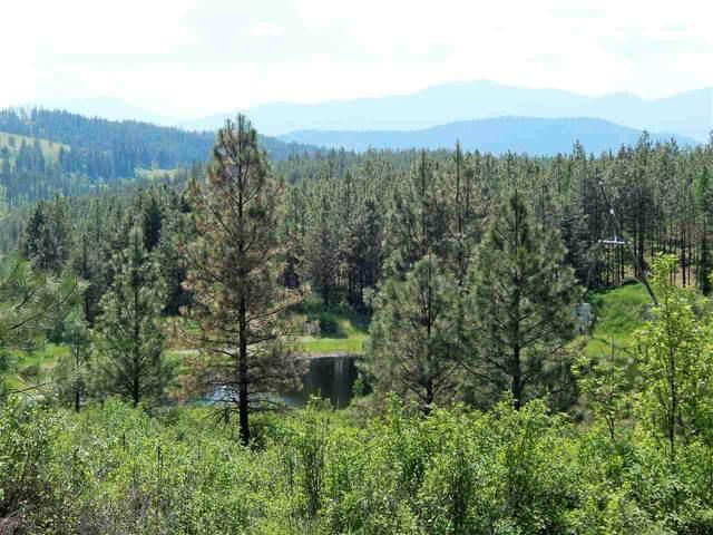 839 E 20 Hwy, Colville, WA 99114 (#202018739) :: Top Spokane Real Estate