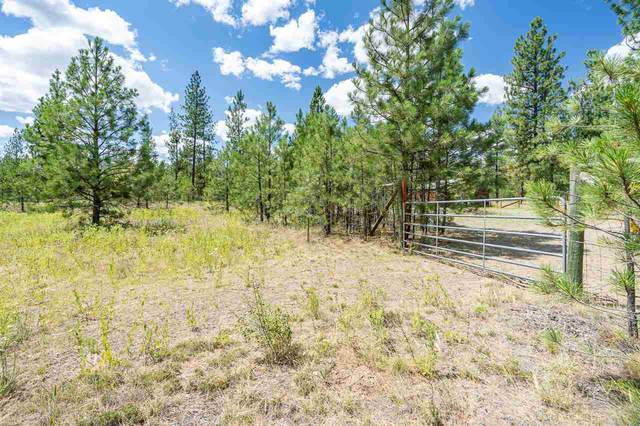 xxxx Corkscrew Canyon Rd, Tumtum, WA 99034 (#202018764) :: RMG Real Estate Network
