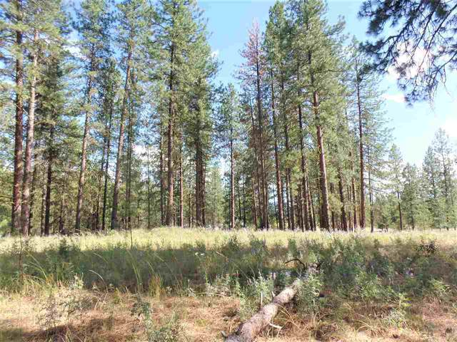 TBD Inchelium Hwy, Kettle Falls, WA 99141 (#202019085) :: Top Agent Team