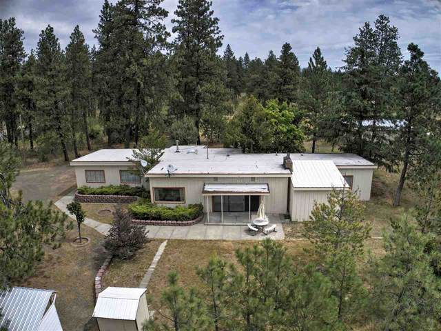 21107 S Spangle Creek Rd, Spangle, WA 99031 (#202019088) :: The Synergy Group