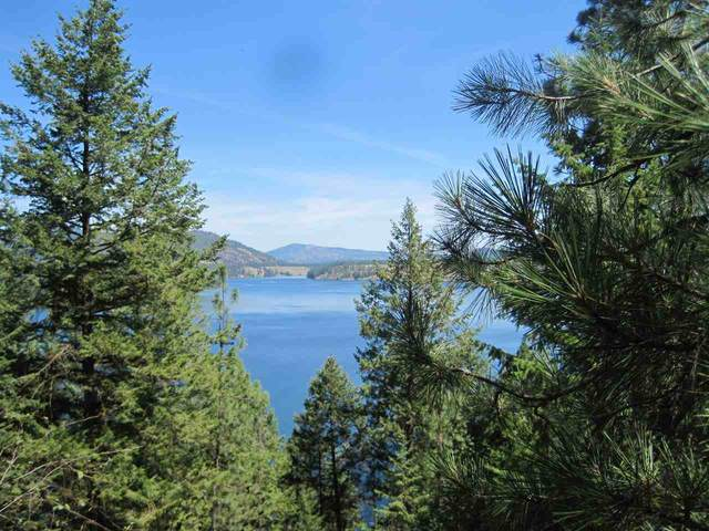 XXX Long Lake Rd, Ford, WA 99013 (#202019107) :: Prime Real Estate Group